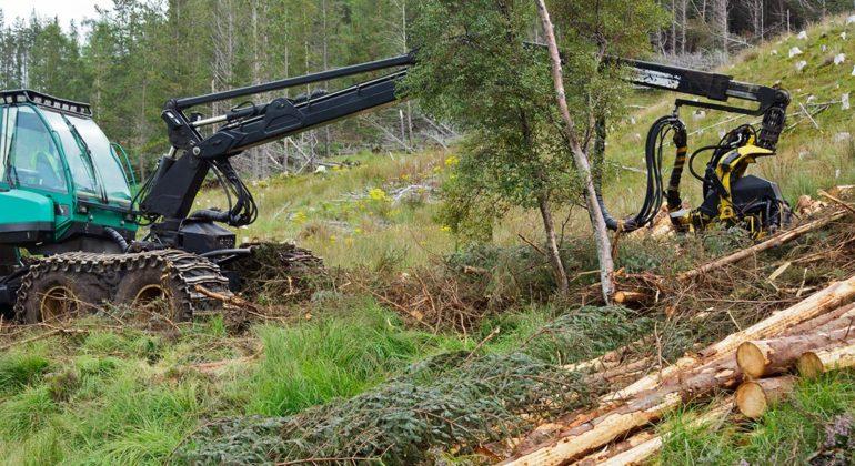 Équipement forestier de qualité