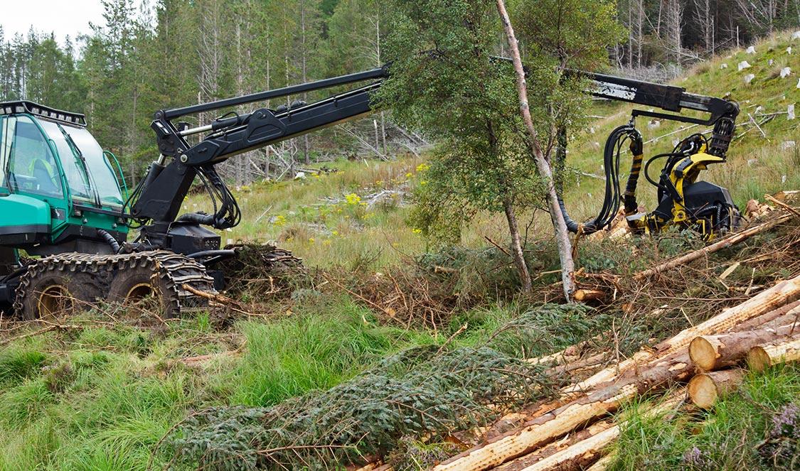Comment faire l'acquisition d'un nouvel équipement forestier de qualité?