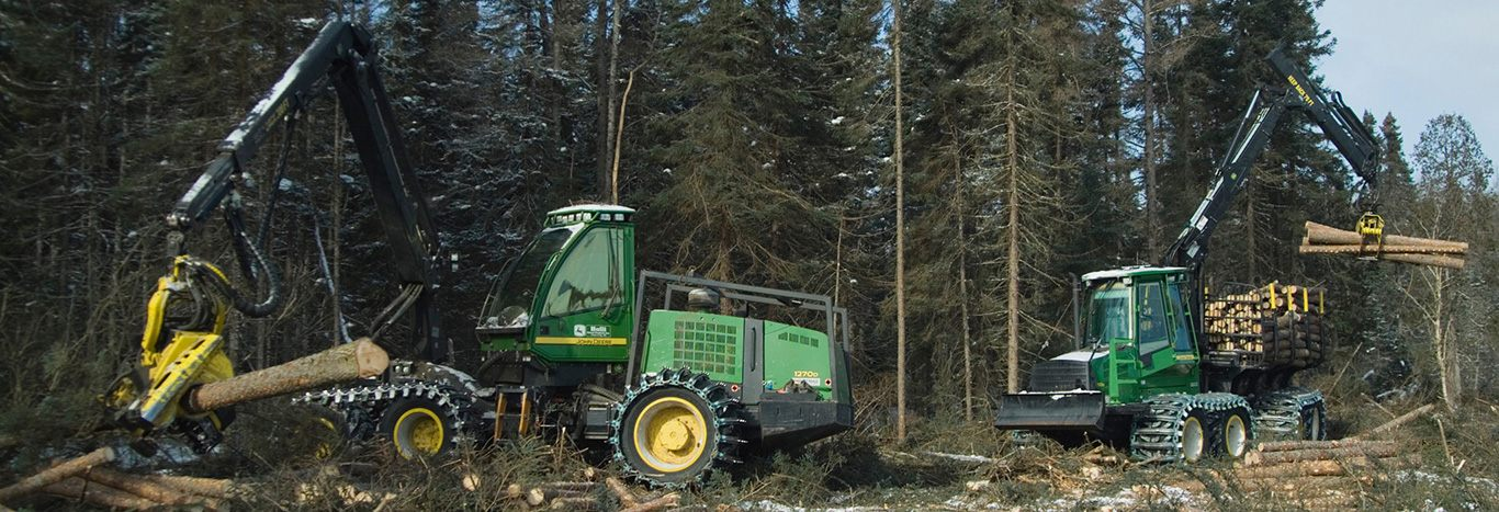 5 Reasons Forestry Equipment Financing Is Right for You